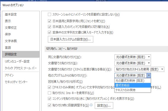 「オプション→詳細設定」画面